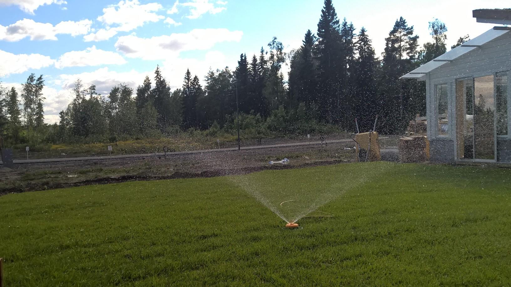 Istutuksen jälkeen nurmikkoa on varauduttava kastelemaan juurtumiseen asti. Paras ajankohta kastelulle on ilta.